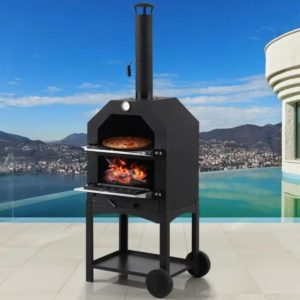 charcoal fired pizza oven